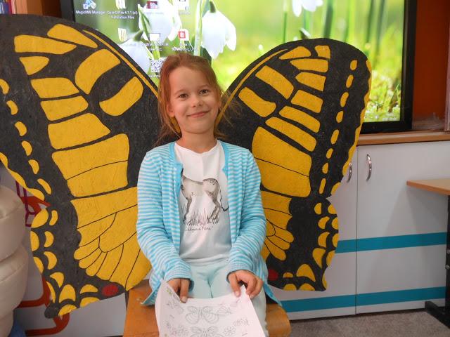 Warsztaty motylkowe