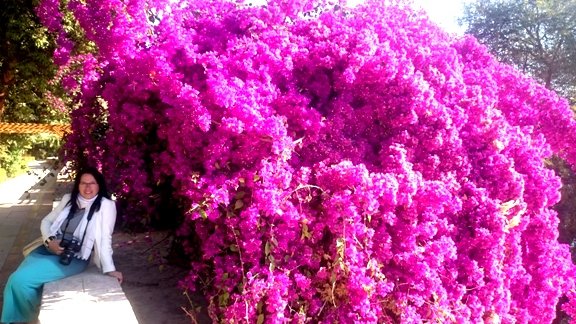 Z wizytą w ogrodzie botanicznym w Asuanie