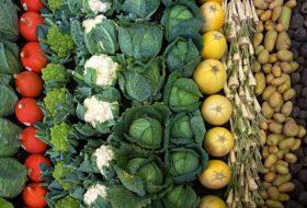 Zima to najlepszy czas na planowanie warzywnika.
