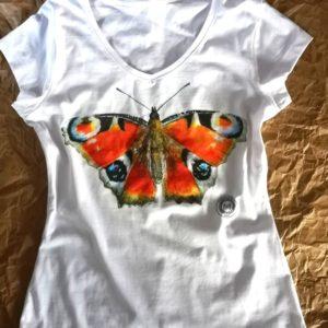 koszulka pawik