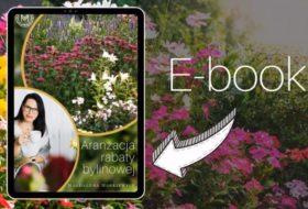 """E-book """"Aranżacja rabaty bylinowej"""""""